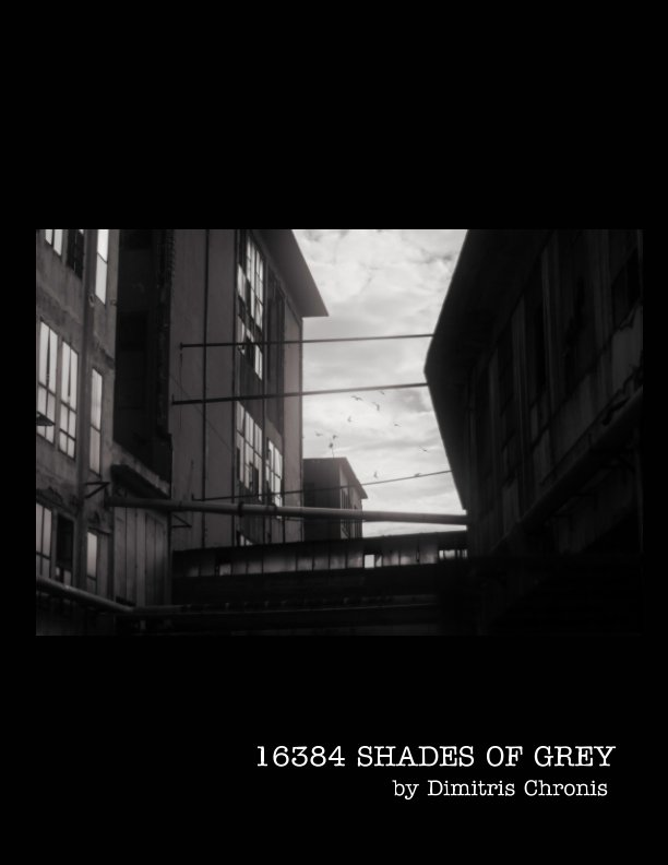 View 16384 Shades of Grey by Dimitris Chronis