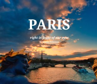 My view of Paris book cover