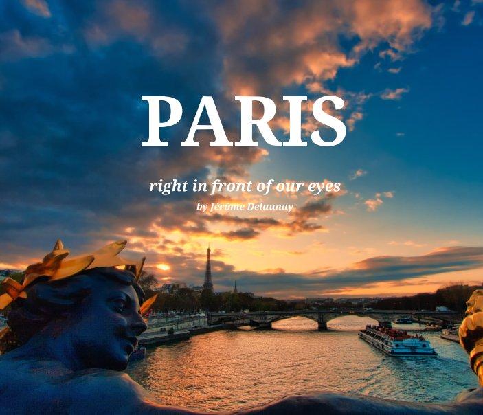 Visualizza My view of Paris di Jérôme Delaunay