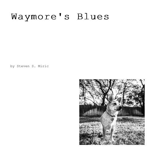 View Waymore's Blues by Steven S. Miric