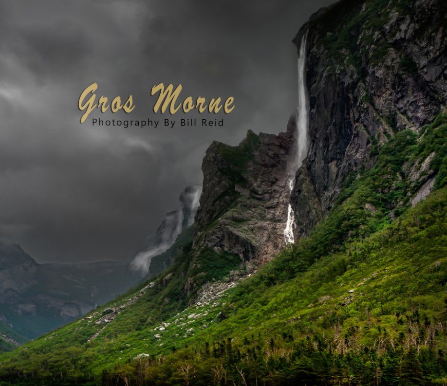 View Gros Morne by Bill Reid