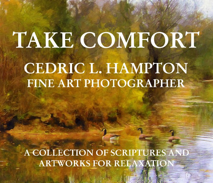View Take Comfort by Cedric L. Hampton