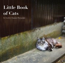 Little Book of Cats book cover