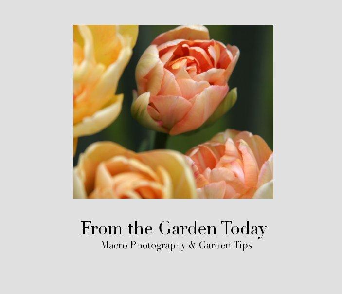 Ver From the Garden Today por Laura Foreman