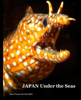 JAPAN Under the Seas book cover