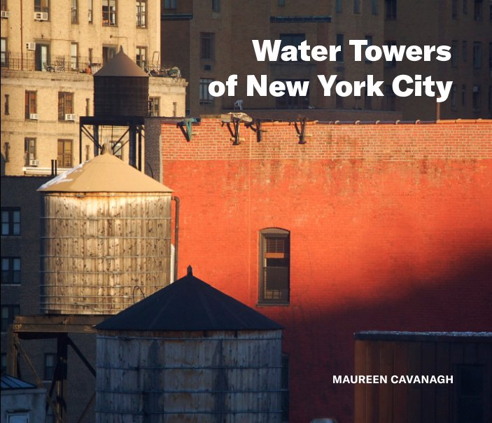 View Water Towers of New York City by Maureen Cavanagh
