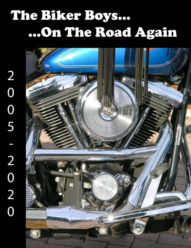 View The Biker Boys by Barry Litwin