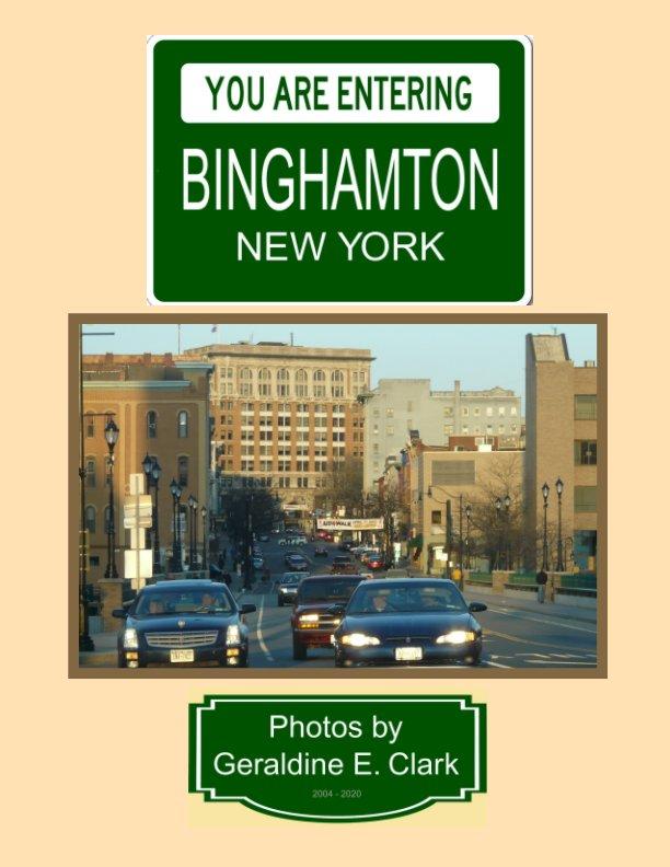 View You Are Entering Binghamton New York by Geraldine E. Clark
