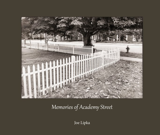 View Memories of Academy Street by Joe Lipka
