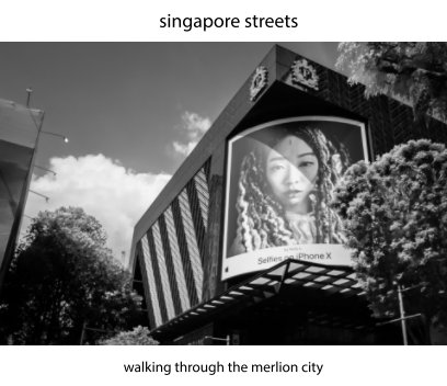 singapore streets book cover