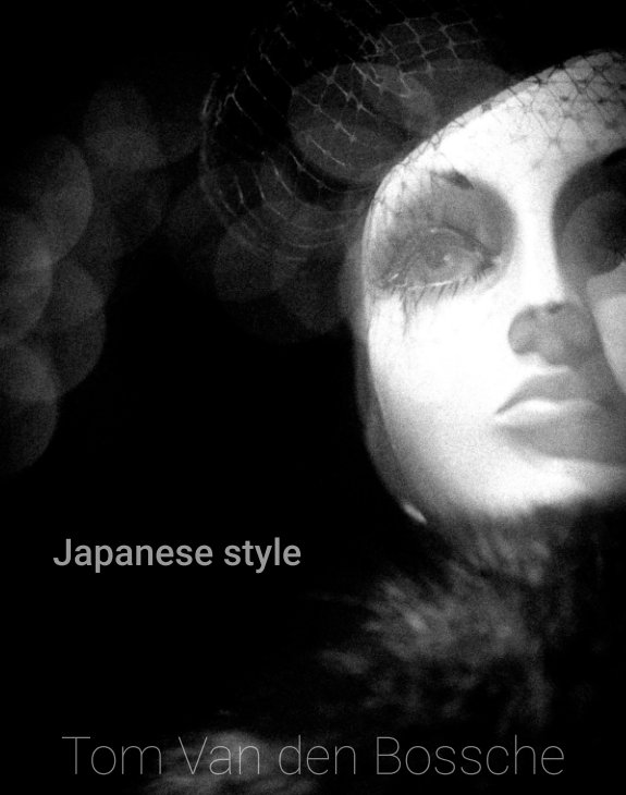 View Japanese style by Tom Van den Bossche