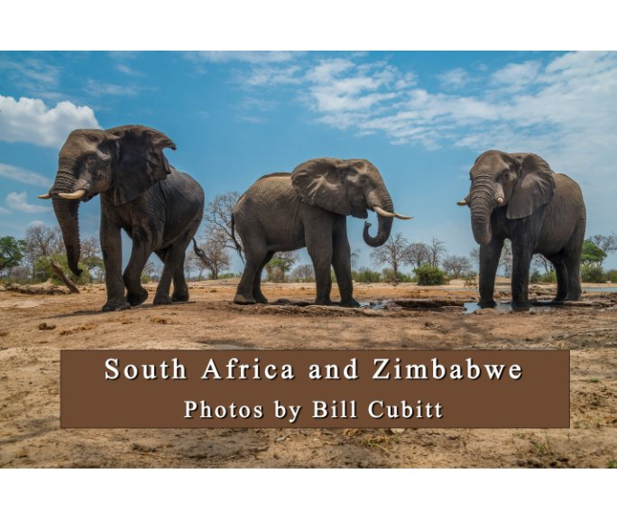 View South Africa and Zimbabwe by Bill Cubitt