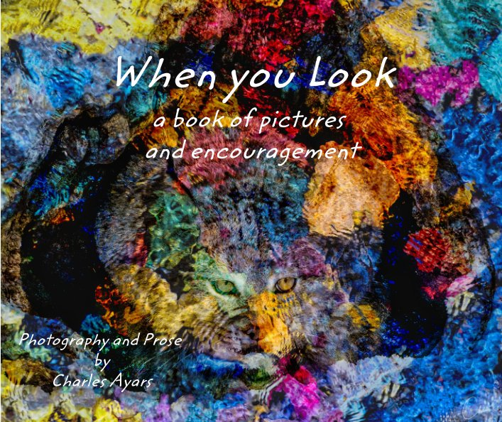 View When you Look by Charles Ayars