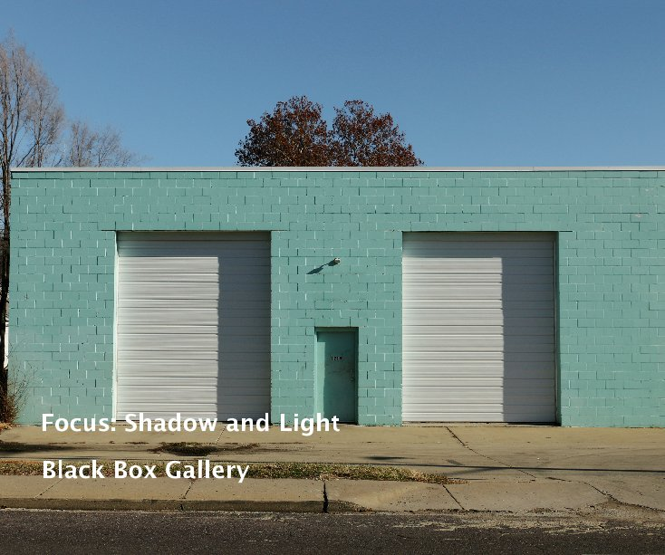 View Focus: Shadow and Light by Black Box Gallery
