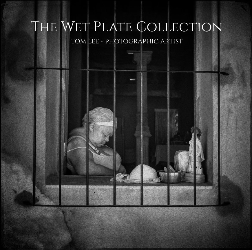 View The Wet Plate Collection by Tom Lee