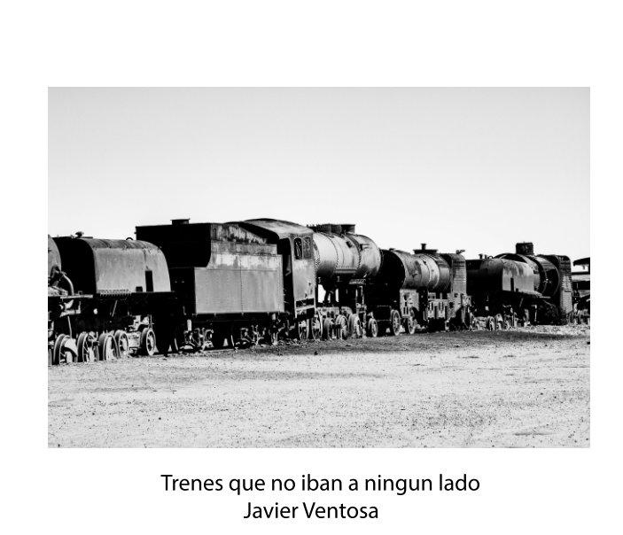 View trenes  que no iban a  ningun lado by Javier Ventosa