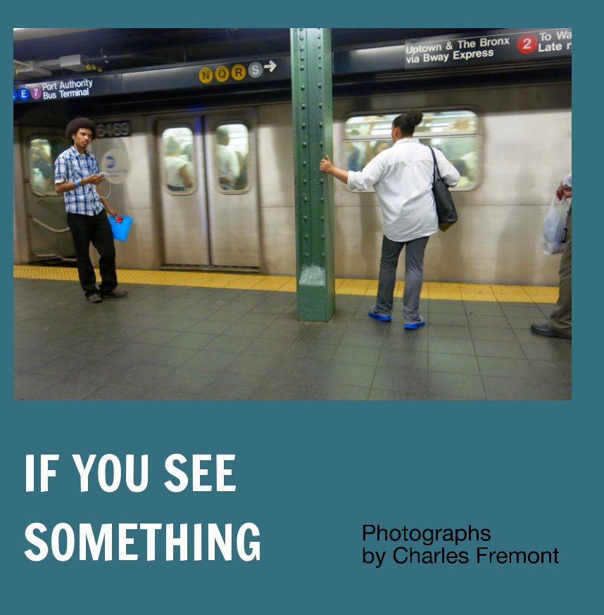 View If You See Something by Charles Fremont