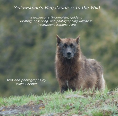 View Yellowstone's Megafauna / In the Wild by Willis Greiner