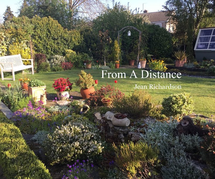 View From A Distance by Jean Richardson