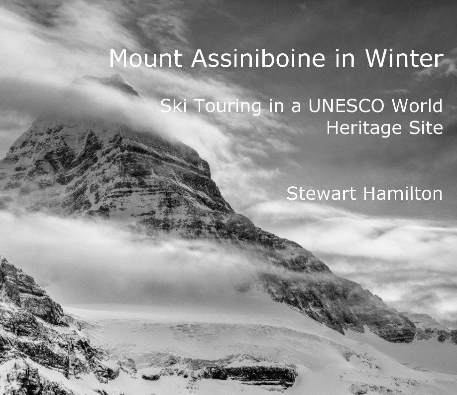 View Assiniboine in Winter by Stewart Hamilton