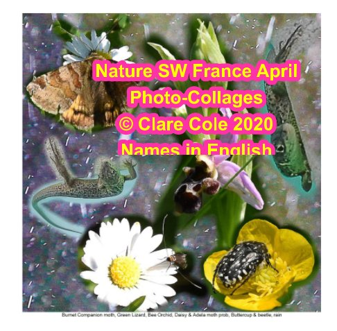 Ver Nature SW France April Photo-collages, Names in English por Clare Cole