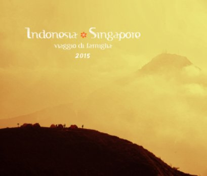Indonesia + Singapore 2015 book cover