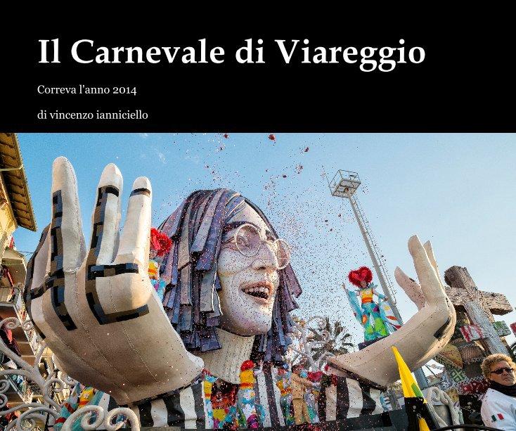 View Il Carnevale di Viareggio by di vincenzo ianniciello