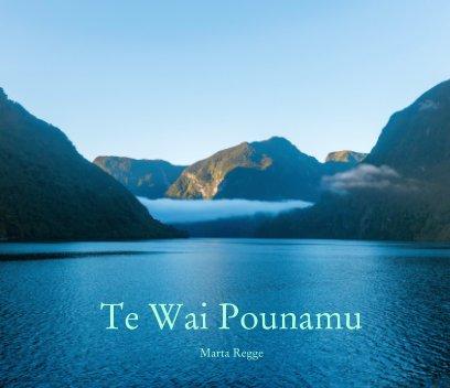 Te Wai Pounamu book cover