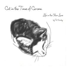 Cat in the Time of Corona book cover