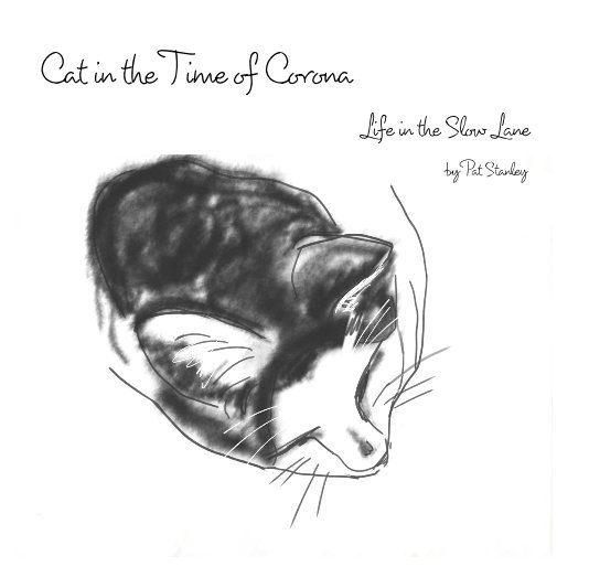 Cat in the Time of Corona nach Pat Stanley anzeigen