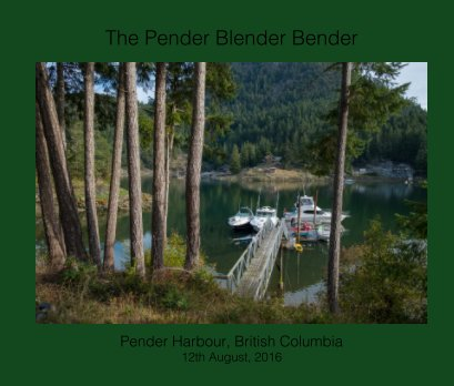 The Pender Blender Bender book cover