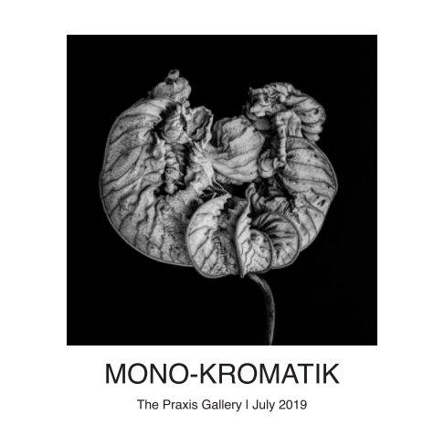 View Mono - Kromatik by The Praxis Gallery