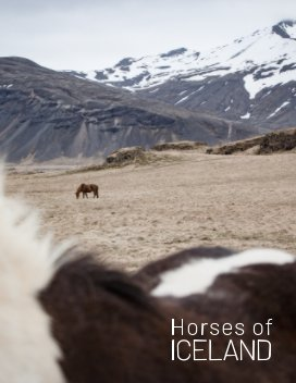 Horses of Iceland book cover