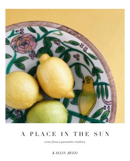 A Place in the Sun book cover