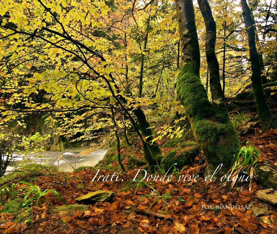 View Irati. Donde vive el otoño by por juandelsaz
