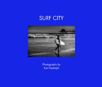 Surf City book cover
