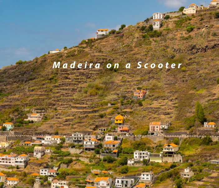 View Madeira on a Scooter by Nikita Kompaniets