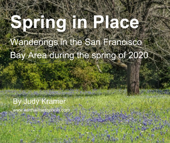 View Spring in Place by Judy Kramer