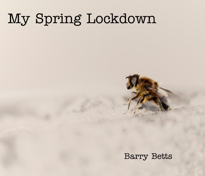 View My Spring Lockdown by Barry Betts