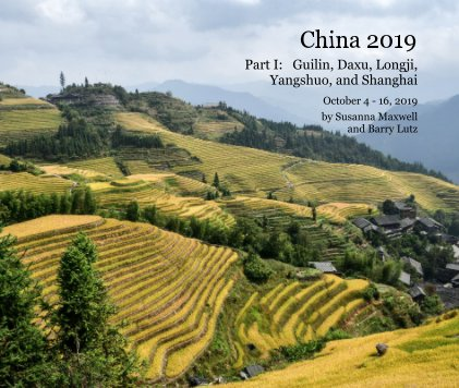 China 2019 book cover