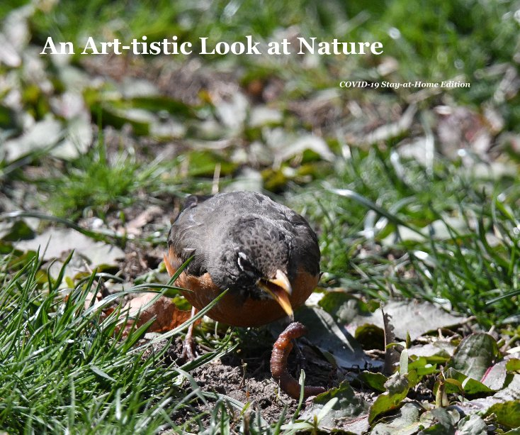 Visualizza An Art-tistic Look at Nature di Art Frith