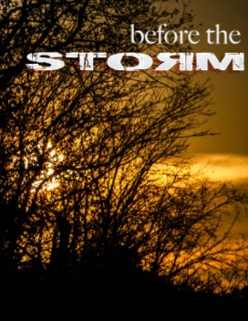 Before the Storm book cover
