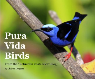 Pura Vida Birds book cover