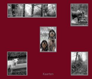 Kaarten book cover