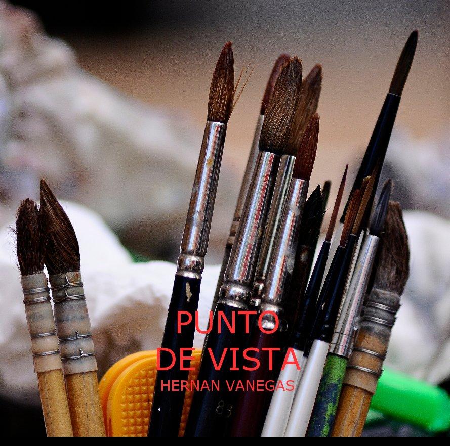 View Punto de Vista by Hernan Vanegas Pastrana