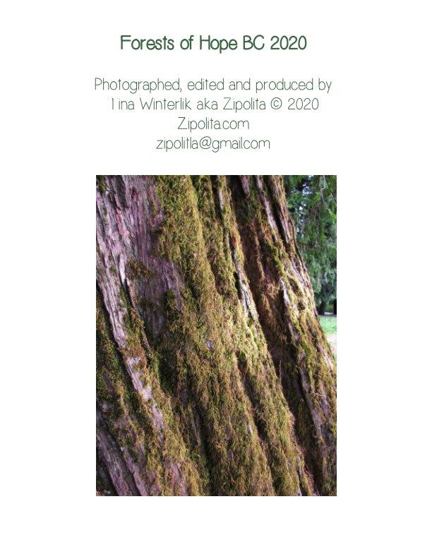 View Forests Of Hope BC 2020 by Tina Winterlik aka Zipolita