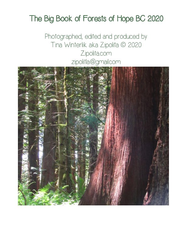 View The Big Book of Forests Of Hope BC 2020 by Tina Winterlik aka Zipolita