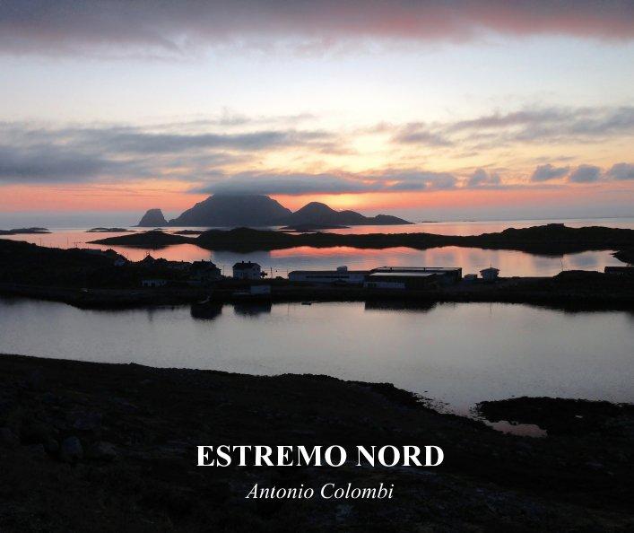 View Estremo Nord by Antonio Colombi