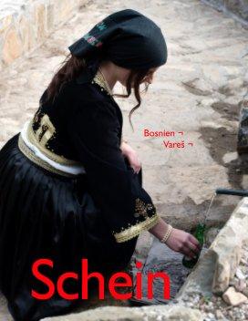 Schein book cover