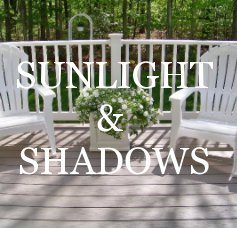 Sunlight and Shadows book cover